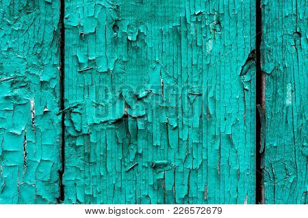 Old Boards With Cracked Cyan Paint. Textured Wooden Old Background With Vertical Lines. Cyan Wooden
