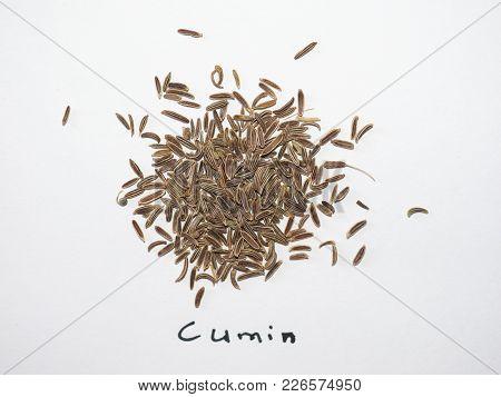 Black Cumin (bunium Bulbocastanum) Aka Caraway Seeds