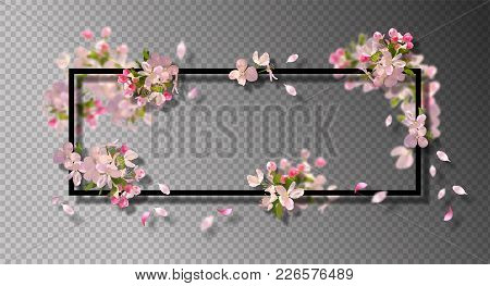 Abstract Frame With Spring Flowers. Vector Background With Spring Cherry Blossom, Falling Petals And