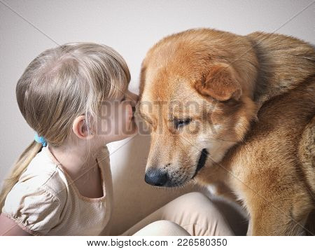 The Little Girl Whispers Something In The Ear Of A Huge Dog. The Dog And The Child Smiling