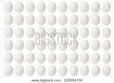 Set Of White Eggs On A White Background, Laid In A Line.