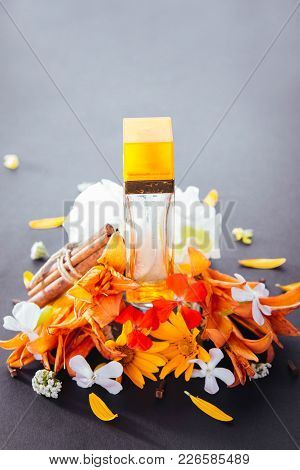 Bottle Of Perfume With Ingredients On Black Background