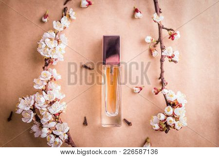 Bottle Of Perfume With Apricot Blossom, Cinnamon And Cloves