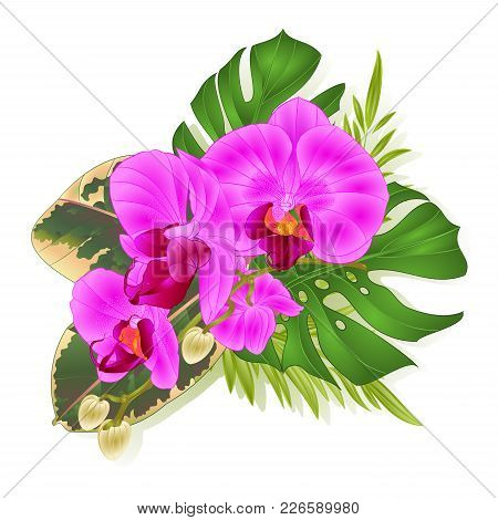 Bouquet With Tropical Flowers Hawaiian Style Floral Arrangement, With Beautiful Purple Orchid, Palm,