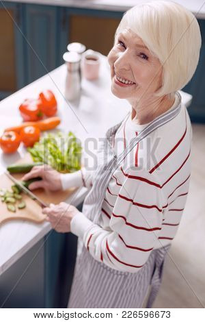 I Love Cooking. Upbeat Elderly Woman In An Apron Posing For The Camera And Smiling Cheerfully While