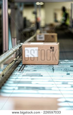 Boxes On A Conveyor Belt In A Manufacturing Plant. Packaging Plant With Boxes Rolling On Belt.