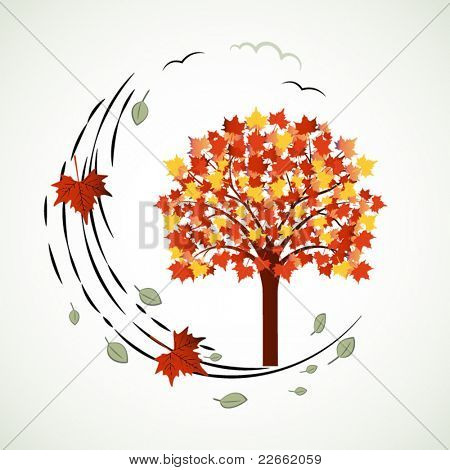 Changing seasons tree with wind