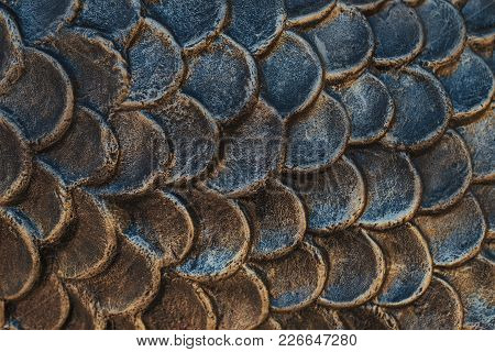 Background Relief Texture Scales For Any Purpose