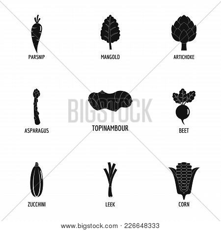 Floristic Icons Set. Simple Set Of 9 Floristic Vector Icons For Web Isolated On White Background