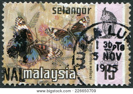 Malaysia (selangor) - Circa 1975: Postage Stamps Printed In Malaysia, Is Shown Butterfly Blue Pansy