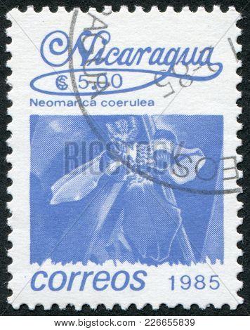 Nicaragua - Circa 1985: Postage Stamps Printed In Nicaragua, Shows Tropical Flower Neomarica Caerule