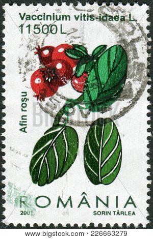 Romania - Circa 2001: A Stamp Printed In The Romania, Shows Vaccinium Vitis-idaea, Circa 2001