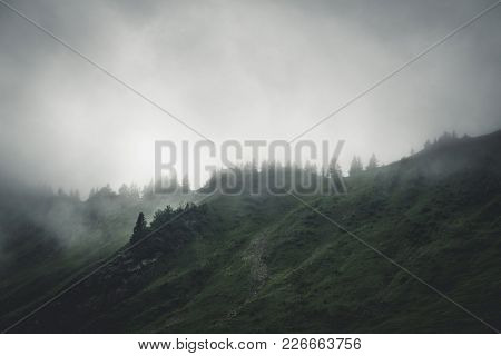 Evergreen forests on a high steep mountain shrouded in low lying cloud and fog under a grey sky