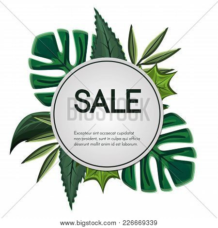 Spring Sale Vector Banner Design With Colorful Tropical And Simple Leaves.round Label.card For Seaso