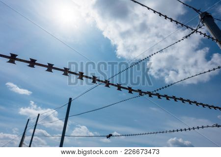 barbed wire on a background of blue sky
