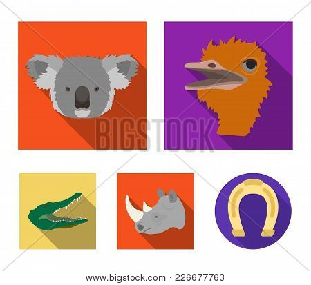 Ostrich, Koala, Rhinoceros, Crocodile, Realistic Animals Set Collection Icons In Flat Style Vector S