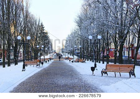 Chernihiv / Ukraine. 24 January 2018: Beautiful Winter Park With Trees Benches And Path. Winter City