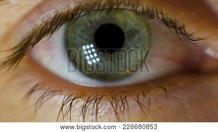 Extreme Macro Of A Brown Eye. Video. Closeup Of Man's Eye. Spot In The Eye. Macro. High Dynamic Rang