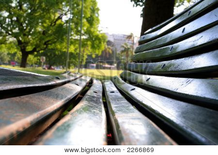On A Bench Ii