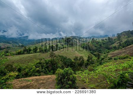 Banana Agriculture On The Mountain In Forest With Mist And Cloudy Sky, Traveling In Thailand
