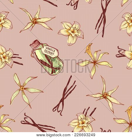 Natural Vanilla Spice Seamless Pattern. Exotic Asian Spice For Dessert Or Parfum Industry Vector Ill