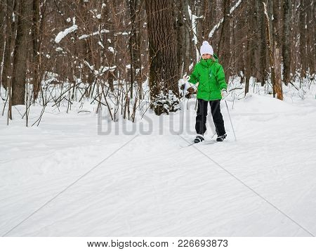 The Girl Moves On Skis With Sticks In The Winter Forest. The Concept Of Sports Education Of Children