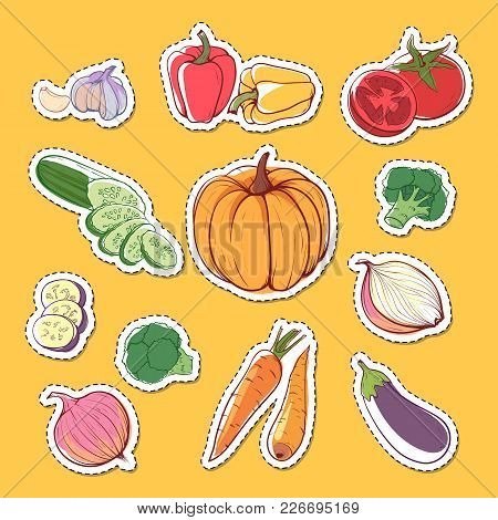 Fresh Organic Vegetables Isolated Labels. Carrot, Pumpkin, Cucumber, Onion, Pepper, Tomato, Eggplant