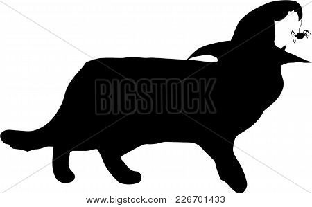 Black Silhouette Of Walking Cat In Witch Hat Isolated On White Background. Vector Illustration, Icon
