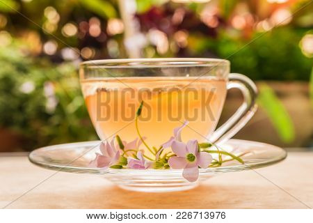 Ginger Teacup With Ginger Slices And Pink Flower On A Wooden Table Background, Beverage Concept, Clo