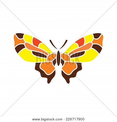 Insect With Colorful Wings Isolated On Black Background