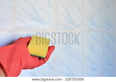 Closeup Of Hand In A Rubber Pink Glove Holding Sponge