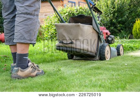 Man Mowing The Lawn In Its Garden