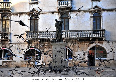 Split, Croatia - March 10: Pigeons Flying In The Square Of Split, Croatia On March 10, 2017.