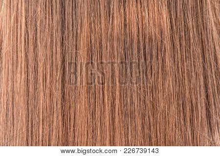 Natural Colored Shiny Healthy Human Hair. Haircare Technology, Style And Beauty Concept. Abstract Te