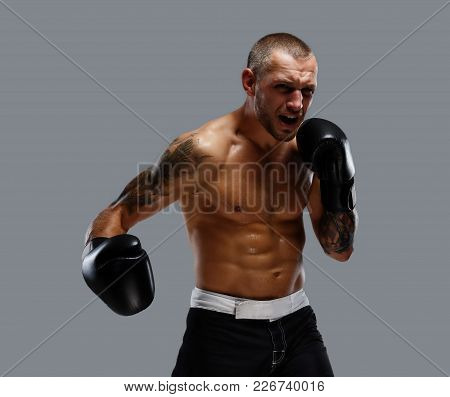 Agressive Tattooed Fighter Isolated On A Grey Background.