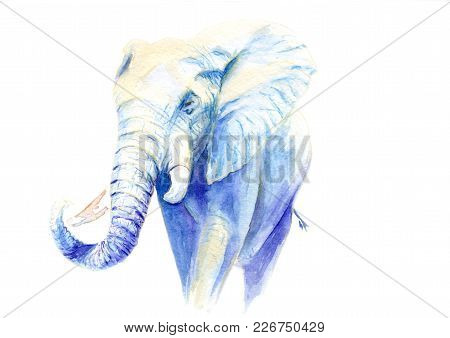 Watercolor Drawing Of A Blue Elephant, Sketch