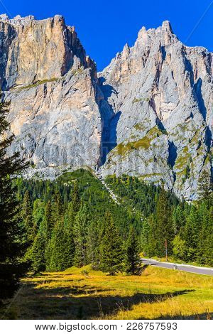 The road passes in the coniferous forests at the foot of limestone and dolomite rocks. Dolomite Alps in Italy. Beautiful day. The concept of active and car tourism