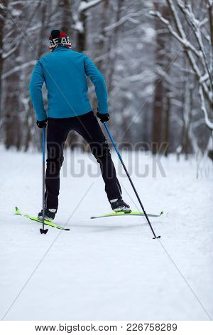 Photo From Back Of Athlete Skier In Forest At Winter Afternoon