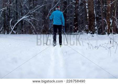 Image From Back Of Skier Athlete In Forest At Winter Afternoon