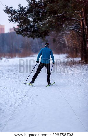 Image From Back Of Male Skier In Blue Jacket In Winter Forest At Afternoon