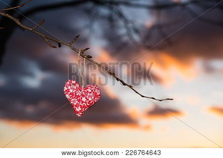 Colorful Small Lovely Heart In Evening Nature, Valentine Photo With Edit Space