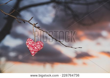 Heart On The Tree, Silhouette, Valentine Photo