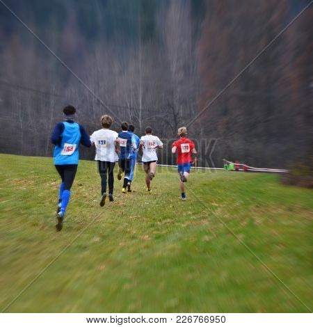 Professional Cross Country Running Championship, Athlete Runs On Meadow