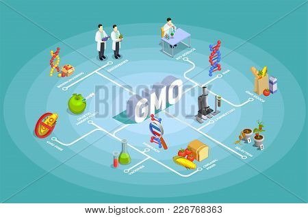 Genetically Modified Organisms Isometric Flowchart On Turquoise Background With Dna, Research, Organ