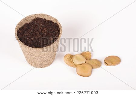 Argiculture Concept: Seeds, Heap Of Soil And Peat Pot