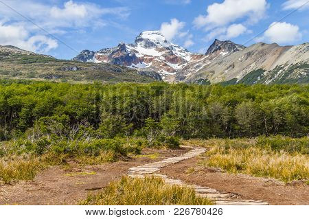 Snow Mountains And Forest In Laguna Esmeralda Trail