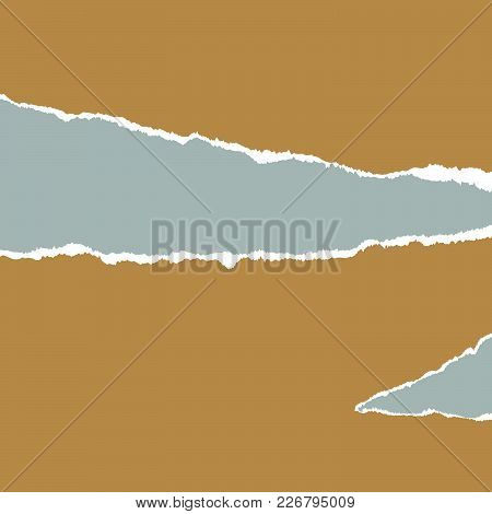 Ripped Paper. Vector Of Ripped Paper. The Paper Was Ripped Background.