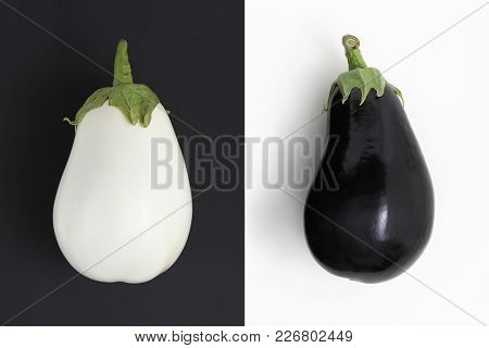 White And Black Eggplants Isolated On White And Black Background No Racism Concept
