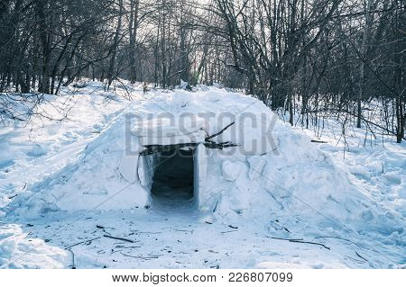 A Small Igloo In The Forest Among The Trees. Snow Hut
