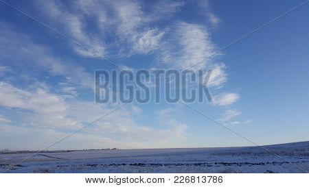 Amazing Deep Blue Sky With Cirrus Feather-shaped Clouds Over Dry Grassland - Nature Background. Cirr
